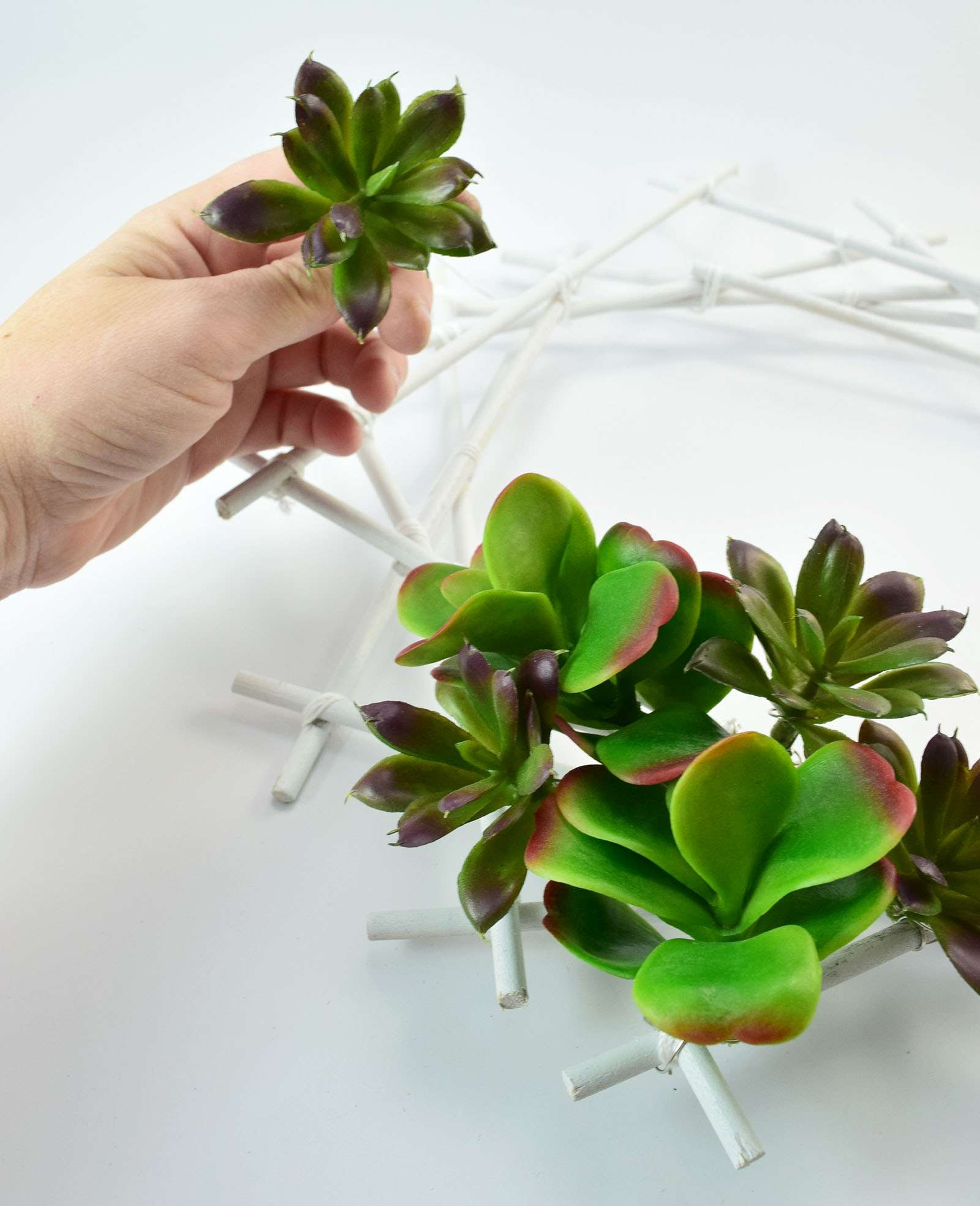 Geometric Succulent Wreath Step 11