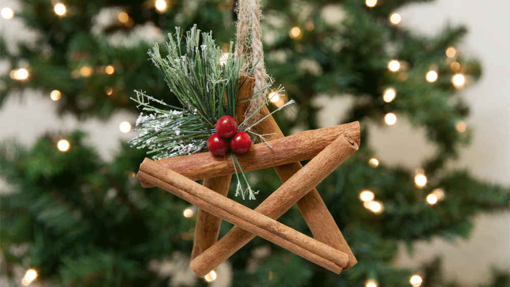 10 Easy Ornament Ideas for the Holidays Step 8